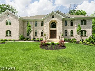 Vienna Single Family Home For Sale: 1626 Hicks Drive
