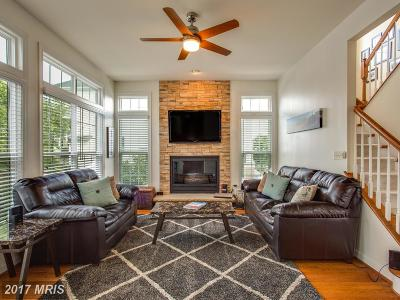 Lorton Single Family Home For Sale: 9205 Haines Drive