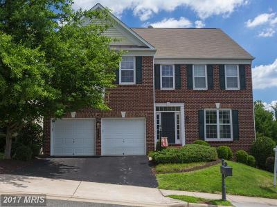 Lorton Single Family Home For Sale: 8194 Douglas Fir Drive