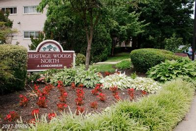 Annandale VA Condo For Sale: $149,900