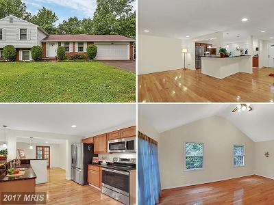 Falls Church Single Family Home For Sale: 7820 Freehollow Drive