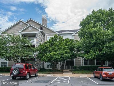 Reston Condo For Sale: 1712 Lake Shore Crest Drive #12