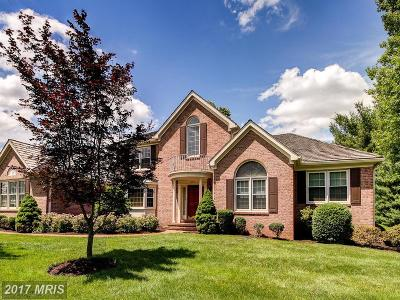 Vienna Single Family Home For Sale: 10729 Hunters Place