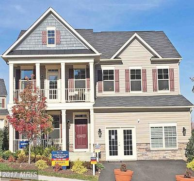 Lorton Single Family Home For Sale: 9054 Cnynoweth Street