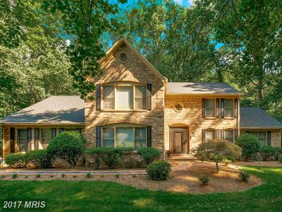 Oakton Single Family Home For Sale: 3251 History Drive