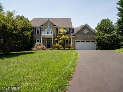 Lorton Single Family Home For Sale: 9231 Wrights Hollow Lane
