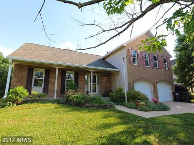 Centreville Single Family Home For Sale: 5624 Barrymore Road