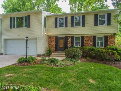 Falls Church Single Family Home For Sale: 7910 Freehollow Drive