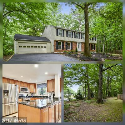 Reston Single Family Home For Sale: 2285 Dosinia Court