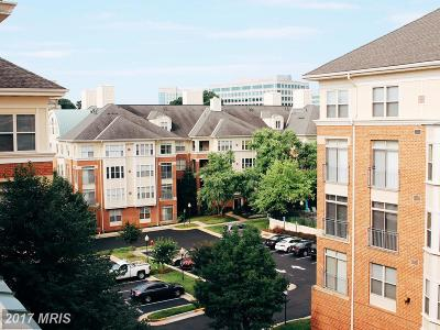 Reston Condo For Sale: 1851 Stratford Park Place #415