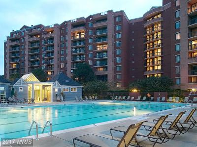 Falls Church Condo For Sale: 2230 George C Marshall Drive #1204