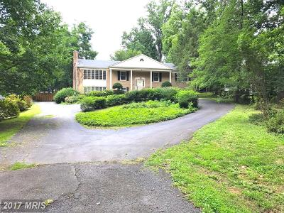 Mclean Single Family Home For Sale: 7328 Old Dominion Drive