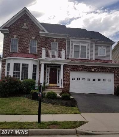 Lorton Single Family Home For Sale: 9222 Treasure Oak Court