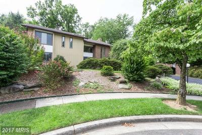 Mclean Single Family Home For Sale: 6405 Woodsong Court
