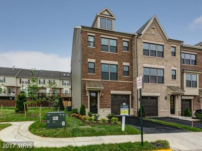 Falls Church Townhouse For Sale: 3677 Ambrose Hills Road