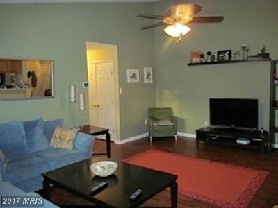 Bel Air Rental For Rent: 1003 Jessica's Court #11