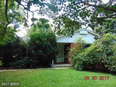 Single Family Home For Sale: 2615 Whitt Road