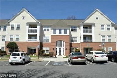Bel Air Condo For Sale: 1310 Sheridan Place #309