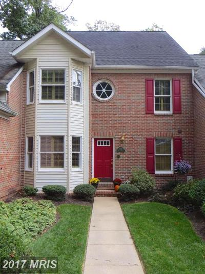 Bel Air Single Family Home For Sale: 1317 Streamview Road