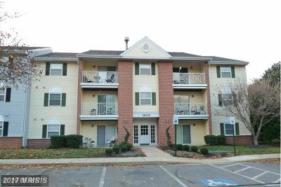 Belcamp Condo For Sale: 1203 Raven Wood Court #102