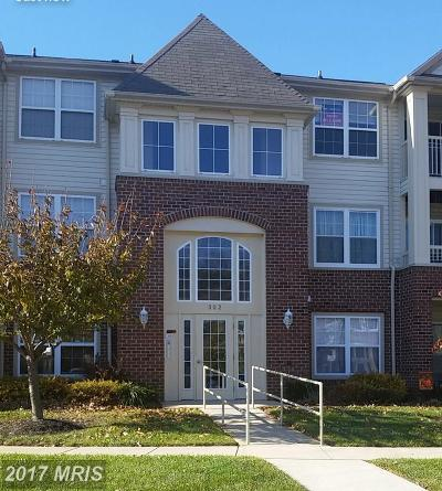 Abingdon Rental For Rent: 302 Tall Pines Court #24