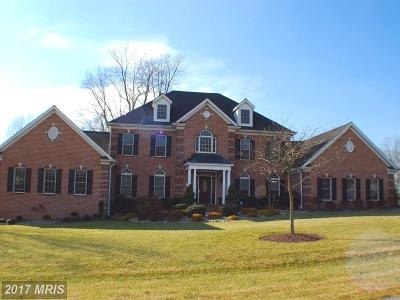 Connolly Farms, Fallsbrooke Manor, Franklins Chance, Laurel Brook Estates, Rochelle Meadows, The Estates At Pleasantville, Willow Vale Frms, Woodcrest, Woodfield Single Family Home For Sale: 2704 Fallsbrooke Manor Drive