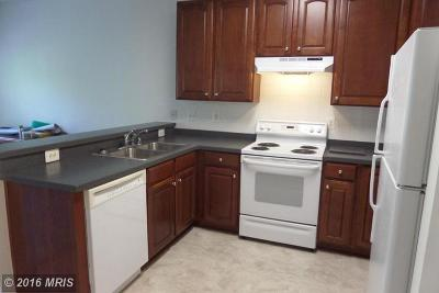 Condo Settled: 310 Willrich Circle #B