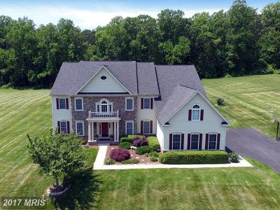 Fallston Single Family Home For Sale: 1427 Martin Meadows Drive