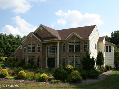 Baldwin Single Family Home For Sale: 2664 Baldwin Mill Road