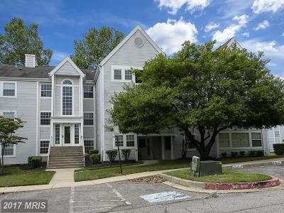 Ellicott City Condo For Sale: 8387 Montgomery Run Road #D