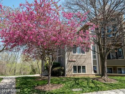Ellicott City Condo For Sale: 4986 Dorsey Hall Drive #A-2