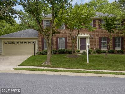 Ellicott City Single Family Home For Sale: 4608 Old Dragon Path