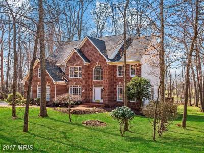 Glenwood Single Family Home For Sale: 3292 Danmark Drive NW