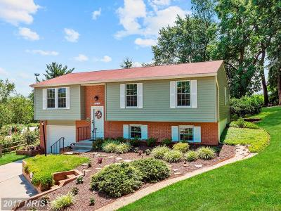 Single Family Home For Sale: 8657 Worn Mountain Way