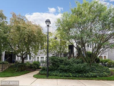 Ellicott City Condo For Sale: 7858 Mayfair Circle #B