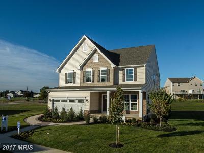 Ellicott City Single Family Home For Sale: 2455 Vineyard Springs Way