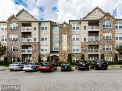 Ellicott City Single Family Home For Sale: 4608 Morning Ride Court
