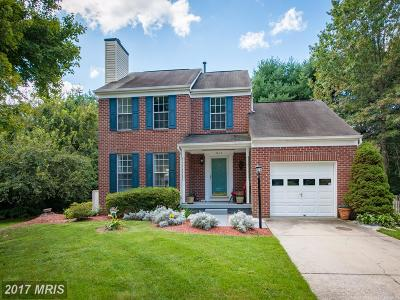 Columbia Single Family Home For Sale: 7017 Jeweled Hand Circle