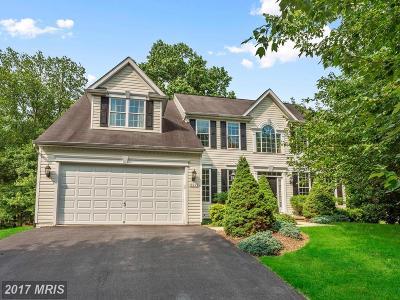 Ellicott City Single Family Home For Sale: 9913 Hidden Haven Court