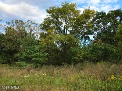Harford County, Howard Residential Lots & Land For Sale: Route 1