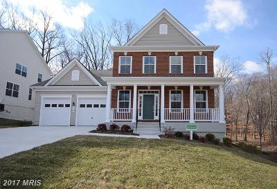 Ellicott City Single Family Home For Sale: 9602 State Route 99 #LOT 3-A