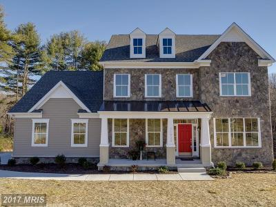 Ellicott City Single Family Home For Sale: 9602 State Route 99 #LOT 3-B