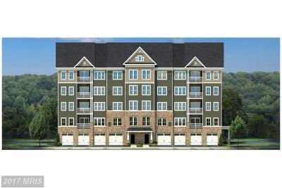 Ellicott City Condo For Sale: 8911 Carls Court #2P