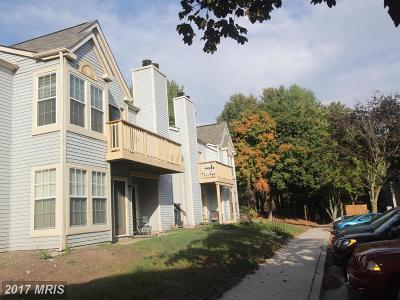 Ellicott City Condo For Sale: 4704 Dorsey Hall Drive #206