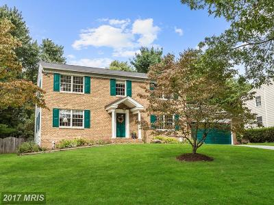 Ellicott City Single Family Home For Sale: 3501 Dairy Valley Trail
