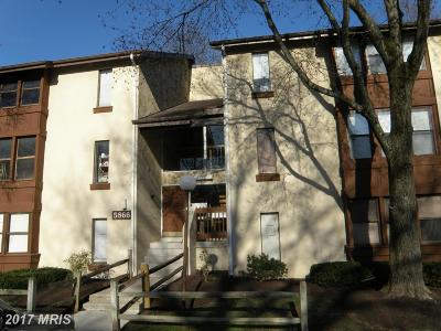 Howard Condo For Sale: 5866 Thunder Hill Road #A-2
