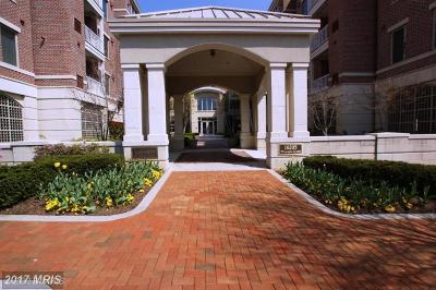 Howard Rental For Rent: 10205 Wincopin Circle #209