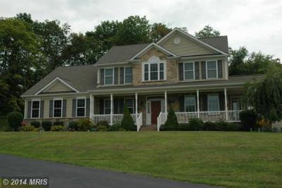 Homes for Sale in Sykesville