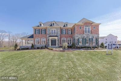 Ellicott City Single Family Home For Sale: 12214 Hayland Farm Way