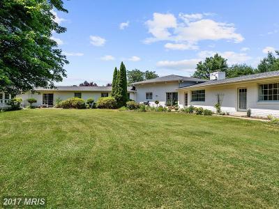 Glenelg Single Family Home For Sale: 14836 Chestnut Court